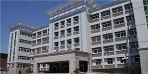 洛宁县文化中心综合大楼弱电智能化系统工程